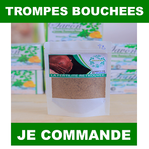 Trompes bouchees